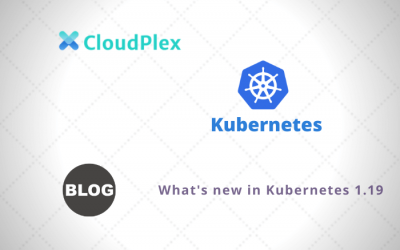 What's new in Kubernetes 1.19